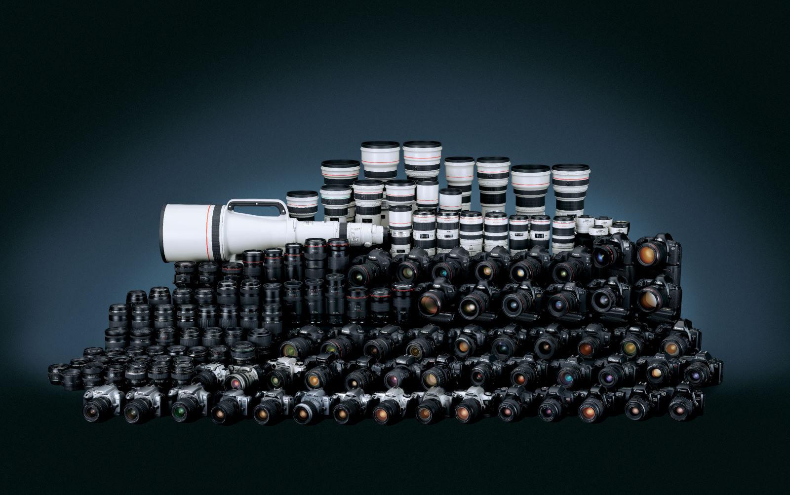 庞大的单反相机群图片